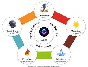 Reach Remarkable 6-Element Model of Performance, Resilience and Wellness